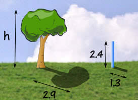 proportion tree