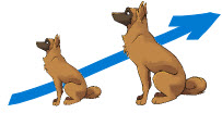 proportional dogs